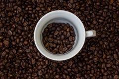 Kawowe fasole w filiżance, filiżanka kawy z fasolami Zdjęcia Stock