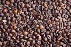 Kawowe fasole w filiżance Fotografia Stock