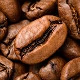 Kawowe fasole w górę wierzchołka zdjęcie stock