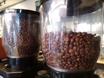 Kawowe fasole w kawowym ostrzarzu obrazy royalty free