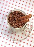 Kawowe fasole w szklanej filiżance z cynamonem Fotografia Stock