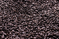 Kawowe serie: Kawowych fasoli tło Obrazy Royalty Free