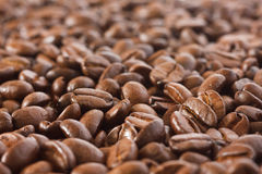 Kawowej fasoli tło Fotografia Royalty Free