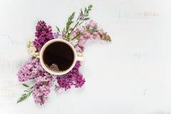 Kawowi i różni lili kwiaty zdjęcia royalty free
