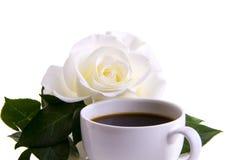 Kawowy delikatny ranek wzrastał Zdjęcia Royalty Free