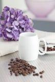 kawowy producent Obraz Stock