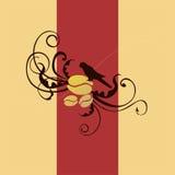 Kawowy ptasi logo Zdjęcia Stock