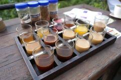 Kawowy testowanie przy Taman Ayun Obraz Stock