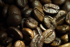 Kawowy zakończenie w świetle słonecznym Zdjęcie Royalty Free