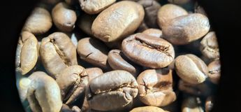 Kawowych fasoli fotografii makro- tekstura zdjęcie royalty free