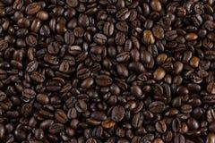 Kawowych fasoli tło Obraz Stock