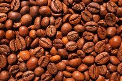 Kawowych fasoli tekstura Zdjęcia Royalty Free