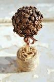 Kawowych fasoli topiary obrazy royalty free
