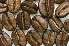 Kawowych fasoli zakończenie Makro- Obrazy Stock