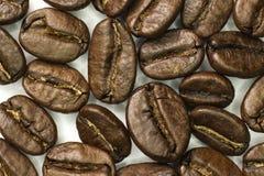 Kawowych fasoli zakończenie Makro- Obraz Stock