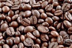 kawy adra Zdjęcie Royalty Free