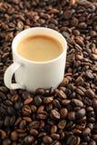 kawy espresso cofee filiżanka na kawowych fasoli tle Obraz Royalty Free