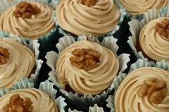 Kawy i orzecha włoskiego muffins Zdjęcia Royalty Free