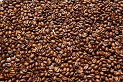 Kawy plaża Obraz Stock