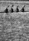 Kayak. A silhouette of athletes kayaking royalty free stock photography