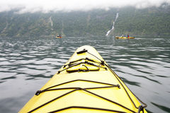 In the Kayak Stock Photography
