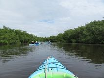 Kayak adventure first person point of view on tropical waterway royalty free stock photo
