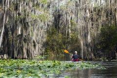 Kayak barbotant dans le marais d'Okefenokee photo stock