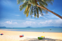 Kayak boat with coconut palm trees and tropical beach background Royalty Free Stock Photography