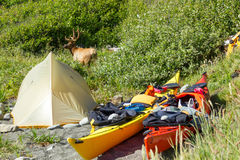Kayak camping in Siskiyou Wilderness, North California Stock Images