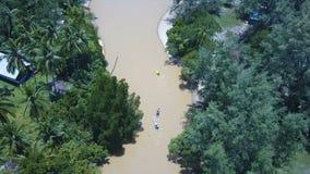 Kayak fahren in der Mangrove Forest Aerial View stock video footage