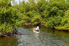 Kayak fahren die Mangroven Stockbilder