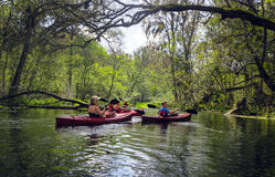 Kayak fahrende Familie - Ichetucknee-Fluss Lizenzfreie Stockfotos