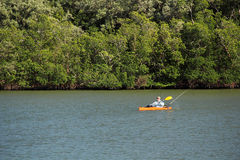 Kayak Fishing In The Everglades Royalty Free Stock Images