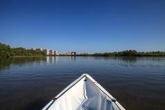 Kayak glides through water along the coastline of Marco Island, royalty free stock photos