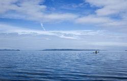 Kayak into the great wide open. A small kayaker is kayaking in the opens of the johnstone strait Royalty Free Stock Image