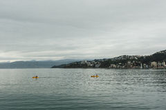 Kayak in harbour. Wellington waterfront, New Zealand. Wellington is the capital city and second most populous urban area of New Zealand as It is home to 395 stock images