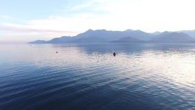 Kayak on Lake Skadar in Montenegro. Tourist kayaking. Aerial Pho. To drone stock video