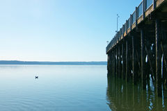 Kayak Point Pier Stock Image