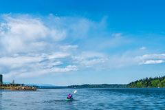 Kayak Puget Sound sur Budd Inlet photographie stock libre de droits