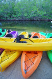 Kayak rental Royalty Free Stock Photos