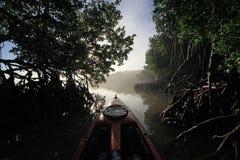 Kayak rouge au lever de soleil dans la coupe d'ours, la Floride images libres de droits