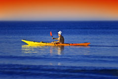 Kayak sailor Royalty Free Stock Image