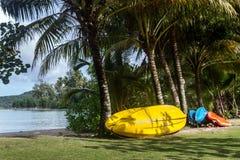 Kayak sous des cocotiers photo stock