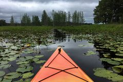 Kayak in the Storm. An orange kayak heads through the dark waters of a vegetation filled bog into an oncoming thunderstorm stock photos