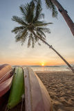 kayak under a palm tree on sand beach Stock Images