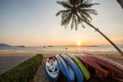 kayak under a palm tree on sand beach Royalty Free Stock Images