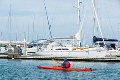 Kayaker полоща за королевской Мариной яхт-клуба Брайтона в Мельбурне стоковые изображения