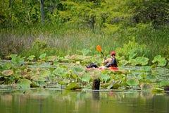Kayaker en la bahía trasera de Virginia Beach foto de archivo libre de regalías