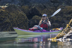 Kayaker in Humpy Cove Stock Images