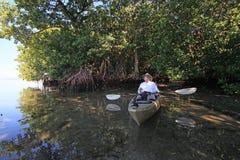 Kayaker que descansa en medio de árboles del mangle fotos de archivo